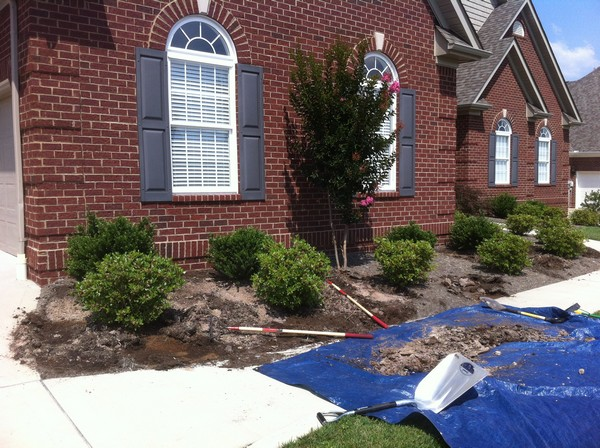 Magic Mulch - Before