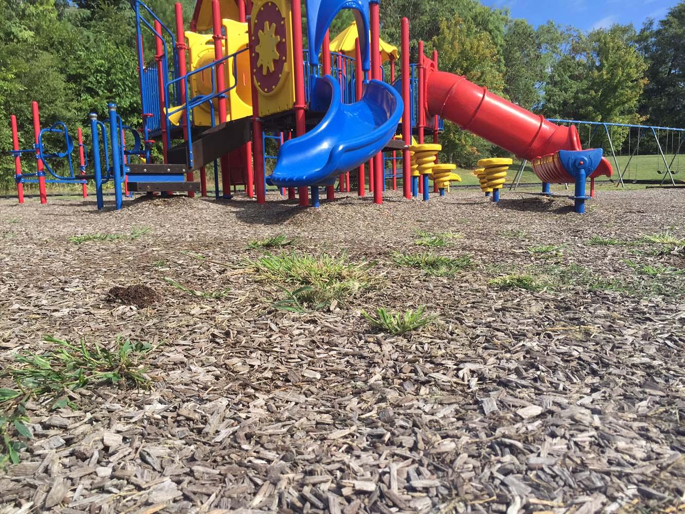 Playground Mulch Before